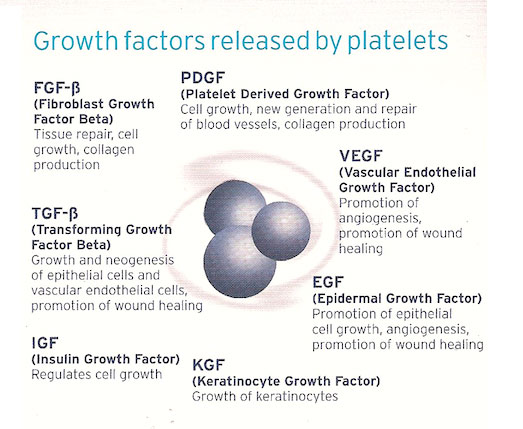 growth-factors-released-by-platelets